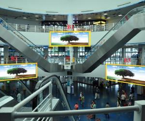 港澳碼頭廣告位